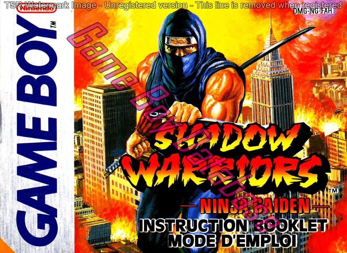 Dmg Ng Fah Shadow Warriors Ninja Gaiden